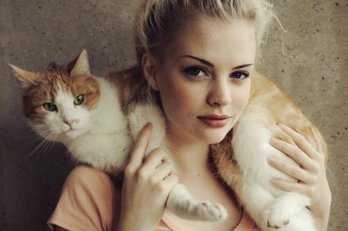 bella e gatto