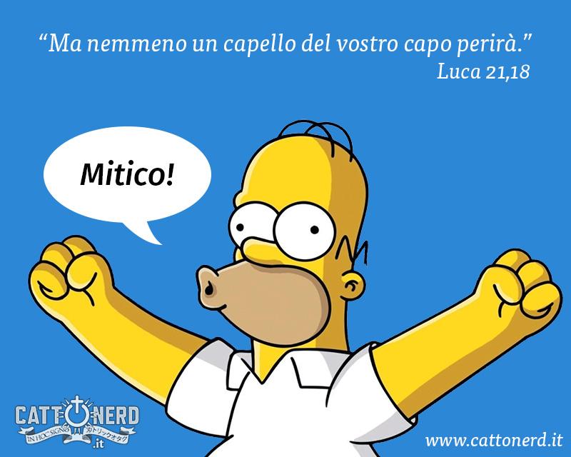 Capelli Homer